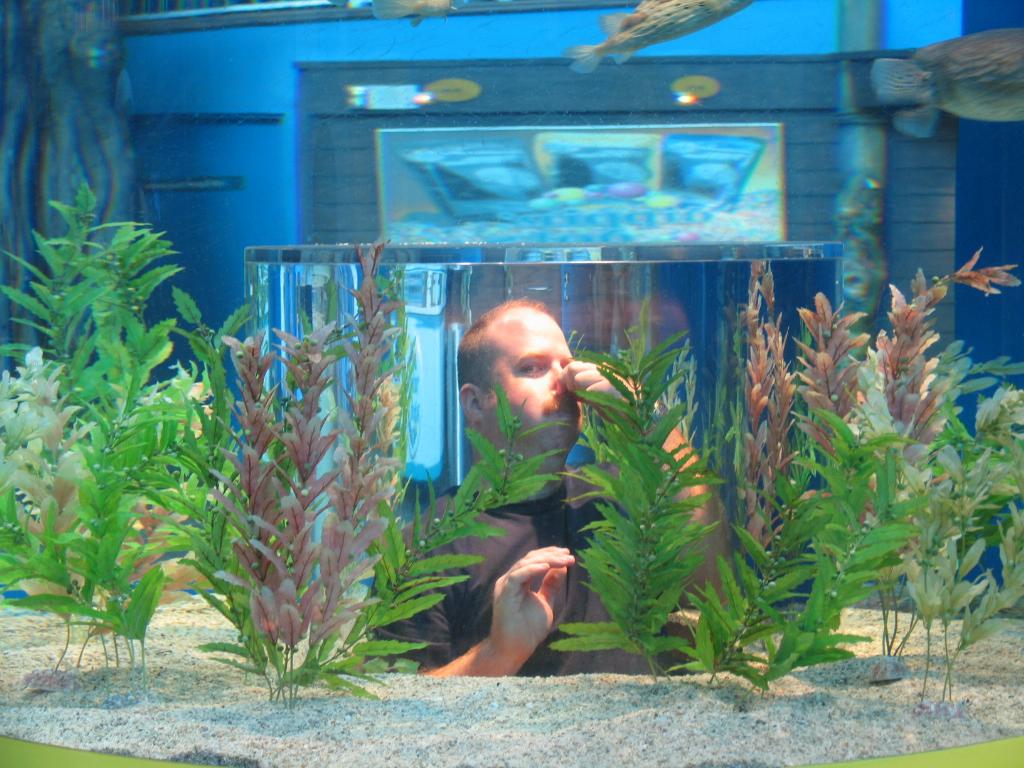 Ripley's Aquarium, Gatlinburg, Tennessee